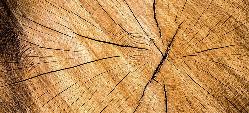 prodotti-legno